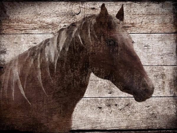 "Malibu Horse. Large rustic horse print up to 60"", Large horse wall art canvas, H"