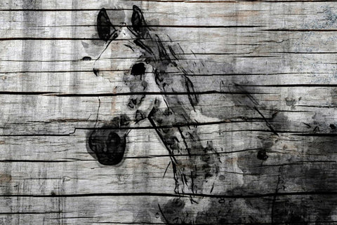"Elegant Horse. Large modern horse print up to 60"", Large horse wall art canvas,"