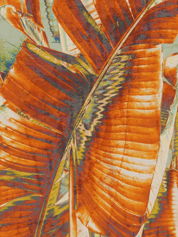 Big Leaves. Canvas Print by Irena Orlov 24x36""