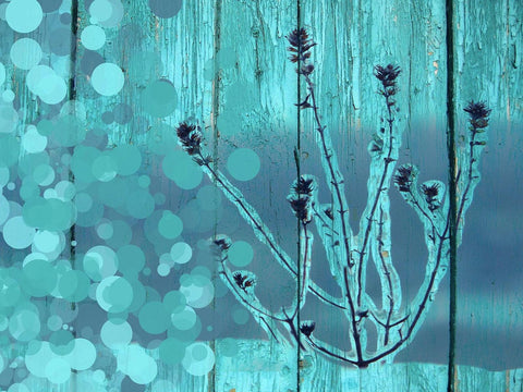 Frozen. Canvas Print by Irena Orlov 20X16""