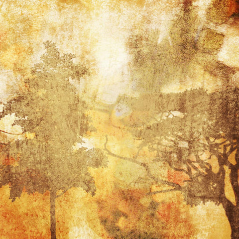 "Autumn Mist.  Canvas Print by Irena Orlov 30"" x 30"", large canvas art print, wal"
