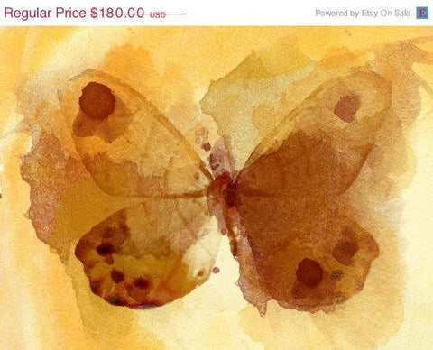 "ON SALE Yellow Butterfly. Canvas Print by Irena Orlov 20X16"" ,large butterfly ca"