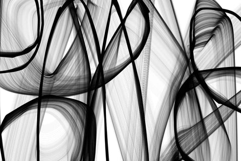 A spiritual being. Large Abstract Black and White Contemporary Canvas Art Print,