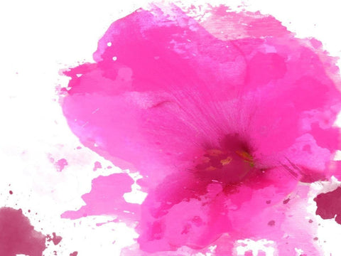 "Expression of pink. Canvas Print by Irena Orlov 24"" X 36"""