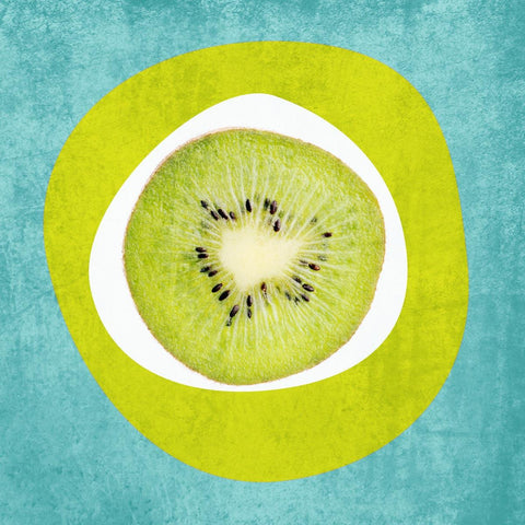"Kiwi. Canvas Print by Irena Orlov 16"" x 16"", large canvas art print, wall art pr"