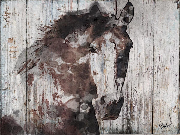"Wild Horse. Canvas Print by Irena Orlov up to 60"", large horse wood plank canvas"