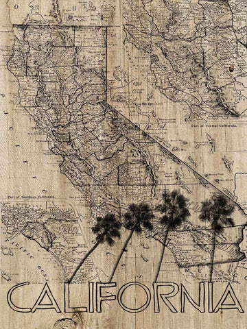 California Old Map. Canvas Print by Irena Orlov