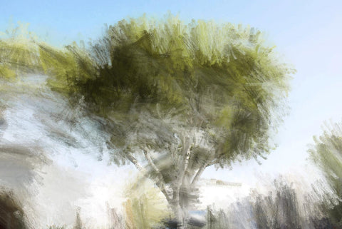 "Green tree . Canvas Print by Irena Orlov 24"" X 36"
