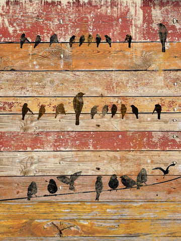 Birds composition iv . Canvas Print by Irena Orlov 20X16""