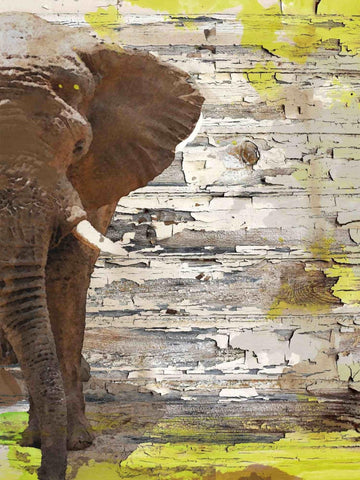 The Elephant. Canvas Print by Irena Orlov 24x36""