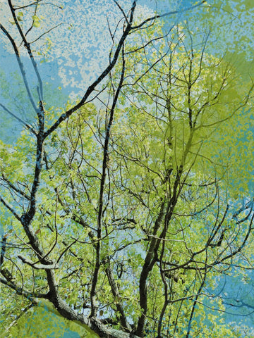 Large Landscape Pictures, forest pictures, landscape art,  green tree,tree art,