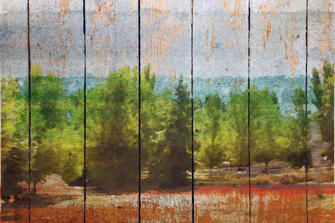 More than green landscape. Canvas Print by Irena Orlov 24x36""