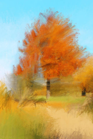 "Autumn came to the trees.. Canvas Print by Irena Orlov 24"" X 36"