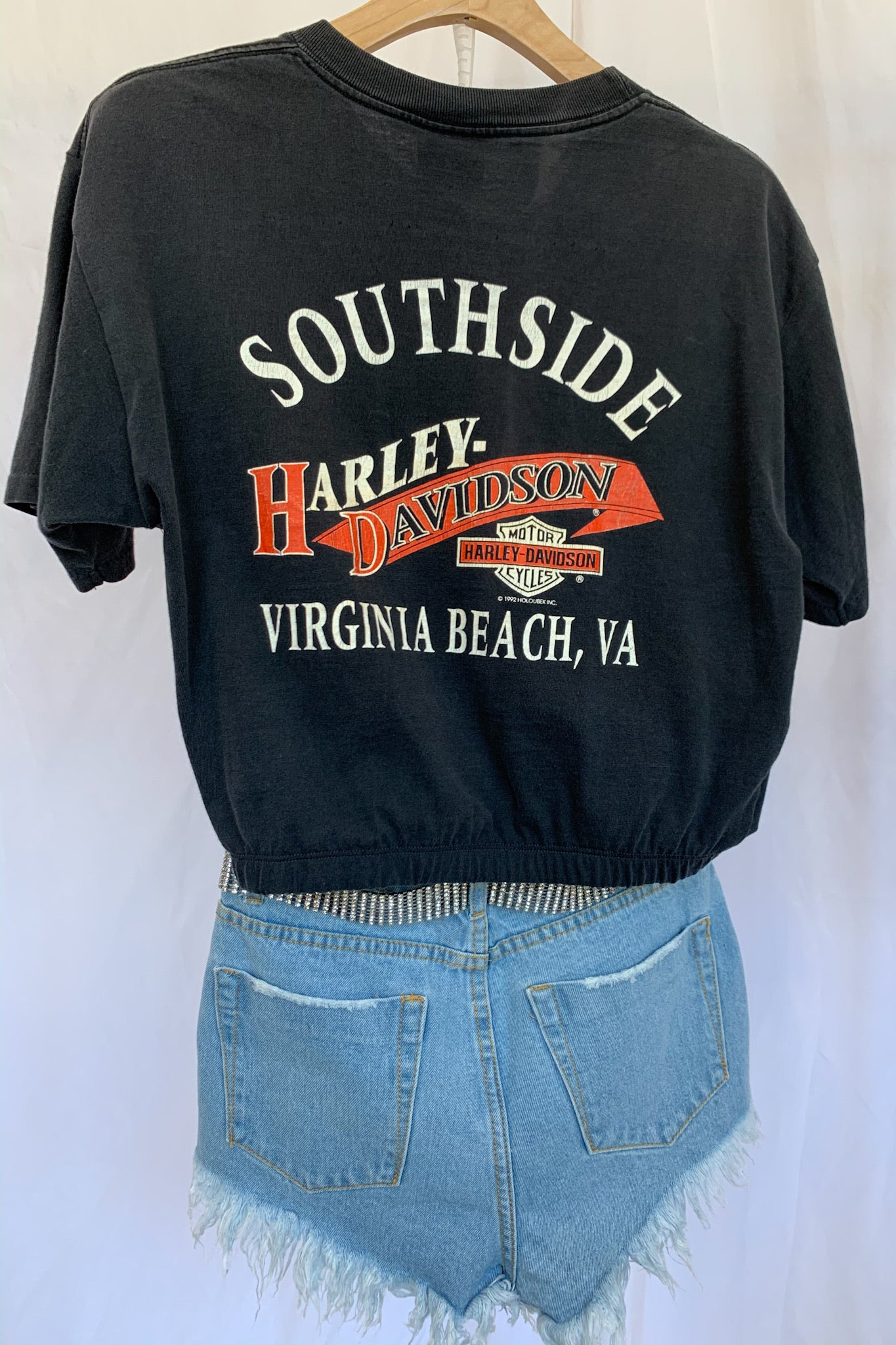 Vintage Harley Virginia Beach Banded Tee