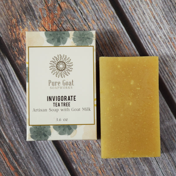 Invigorate Tea Tree Goat Milk Soap - Pure Goat Soapworks