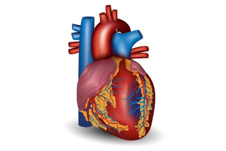 diabetes complications heart disease