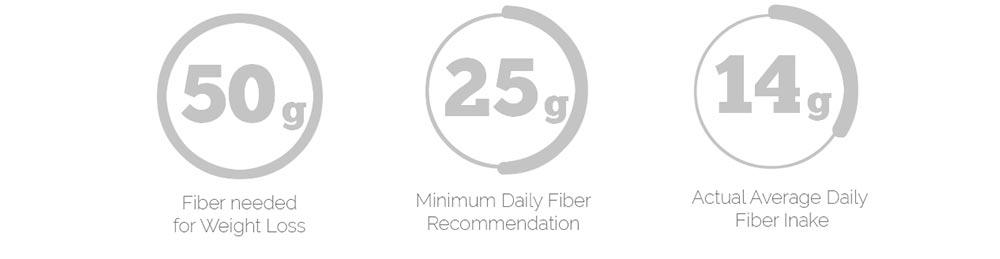 Fiber Needed Daily
