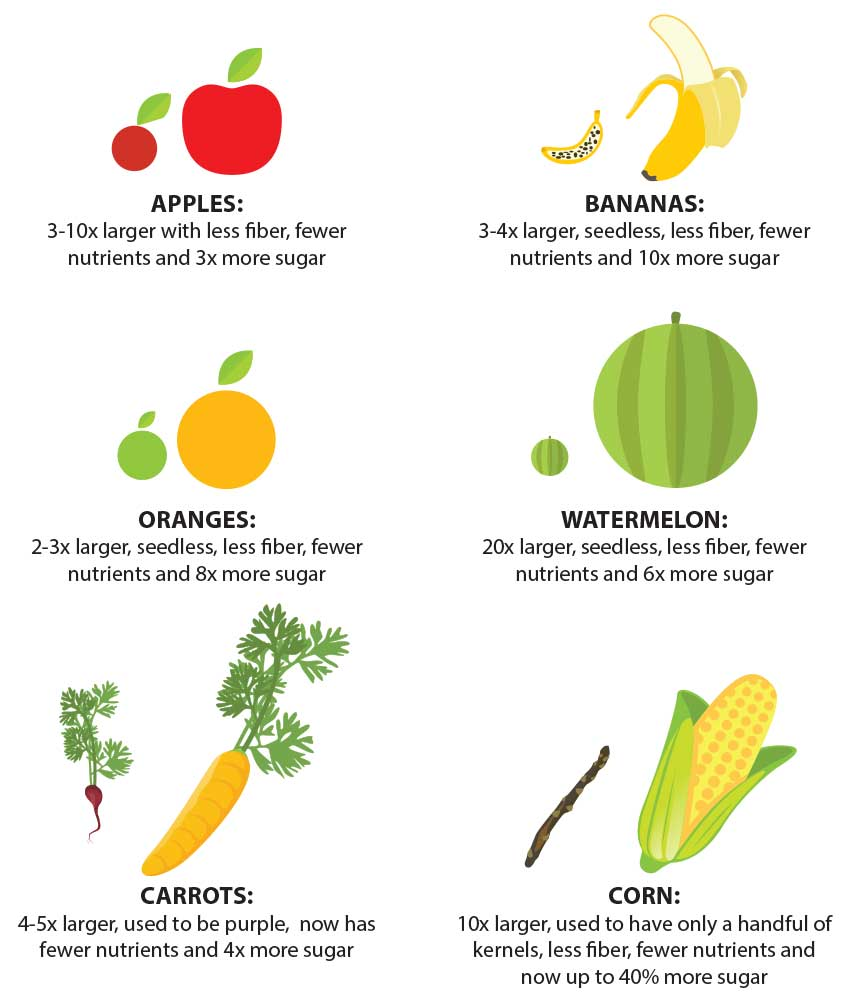 nutracelle vegetable nutrient chart