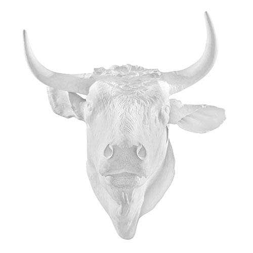 Censurado Bull Head, 21