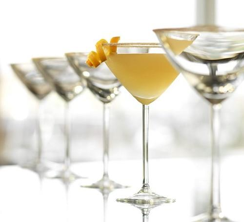 Martini Set by Modern Mixologist