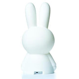 Mr. Maria Miffy First Light by Cool Decor Company