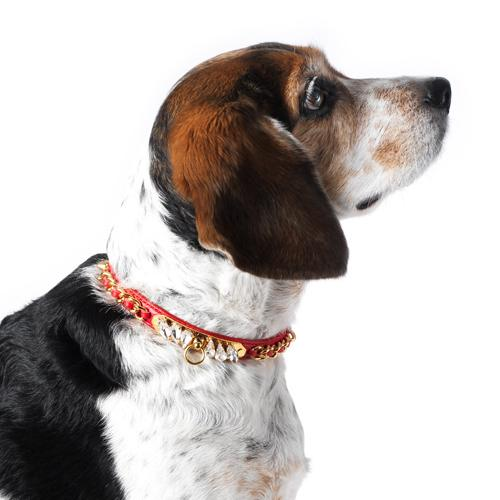 Red Calfskin Dog Collar by Olivia Riegel