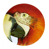 Olhar O Brasil Charger Plate, Red Macaw by Vista Alegre