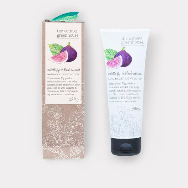 Violette Fig & Black Currant Hand & Body Light Lotion by The Cottage Greenhouse
