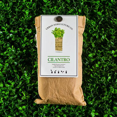 Cilantro Organic Wall Herb Pocket by Urban Agriculture Co.