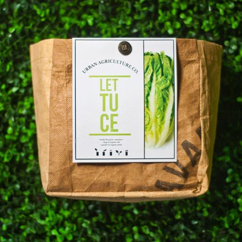 Lettuce Organic Planter Kit by Urban Agriculture Co.