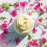Mimosa Blossom Dream Cream by Super Salve Co.