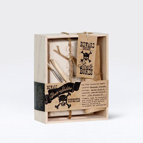 Pirate Skeleton Excavation Kit by Seedling