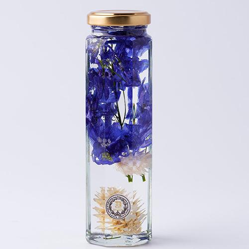 Blue Herbarium by Ballon Japan