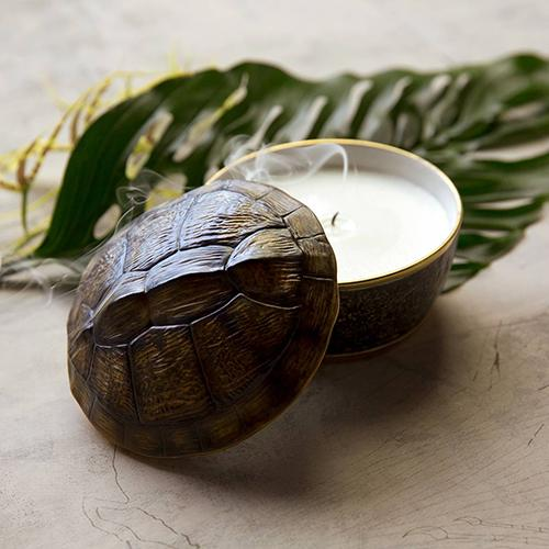 Turtle Candle by L'Objet