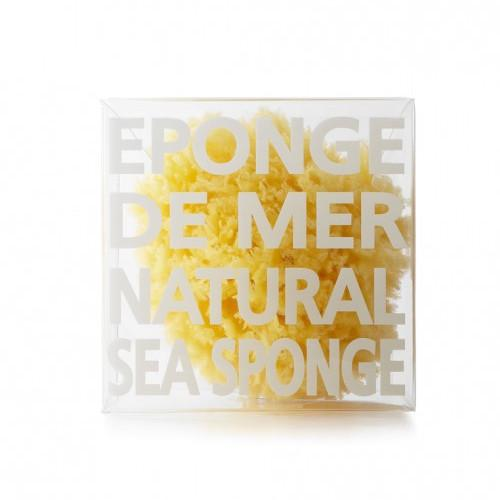 Natural Sea Sponge by Compagnie de Provence