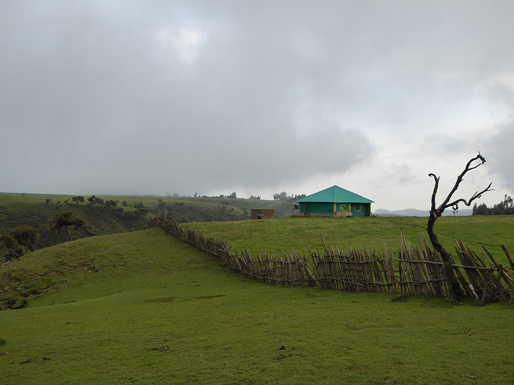 Buyit Ras Lodge in the Simien Mountains