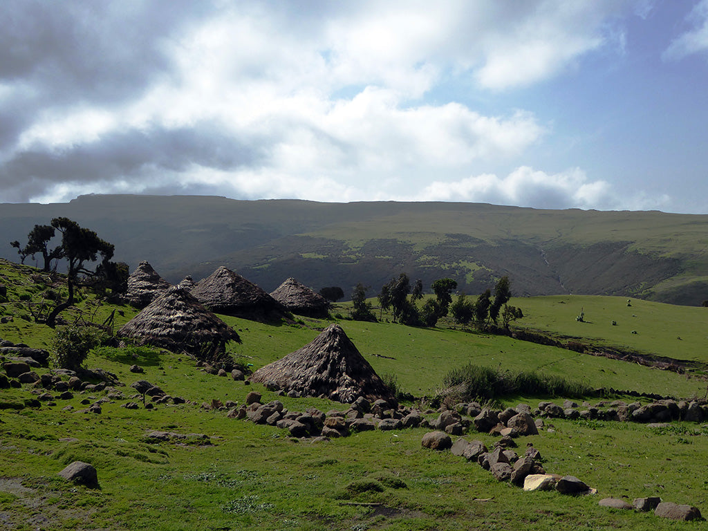 Gich Village in the Simien Mountains Ethiopia