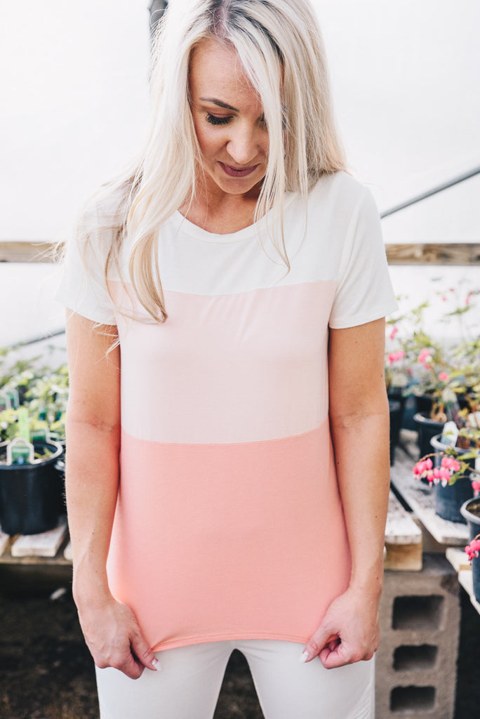 Ombre Colorblock Tee - Blush