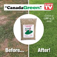 Amazing Canada Grow Anywhere Green Grass Seeds 6lbs