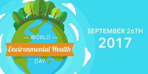What You Can Do This World Environmental Health Day
