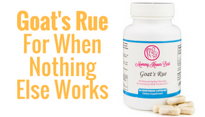 When Nothing Else Works:  Goat's Rue Herb Provides An Allergy Friendly Lactation Solution