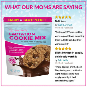 Lactation Cookie Mix - Gluten/Dairy Free - Chocolate Chip - 16 oz