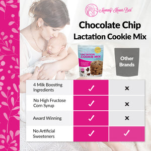 Lactation Cookie Mix - Oatmeal Chocolate Chip - 16 oz