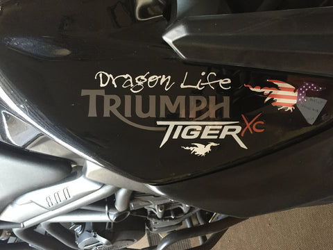 "Dragon Life 6"" sticker"