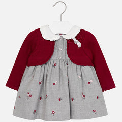2935 Baby girl long sleeve embroidered flannel dress
