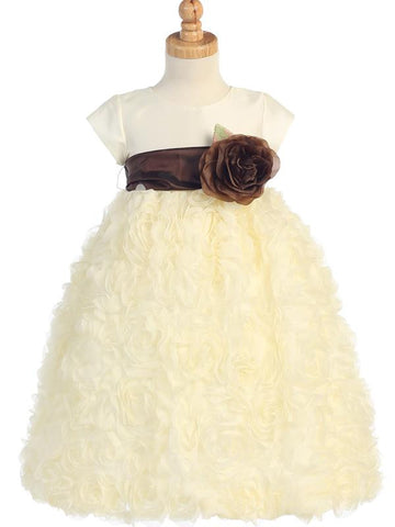 Taffeta and Tulle with Chiffon BL229