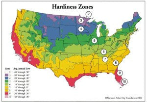 Spring is Coming! Do You Know Your Gardening Zone?