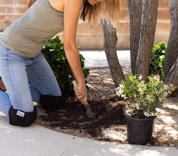 5 Hard, Brutal, Honest Truths about (Ugh!) Gardening