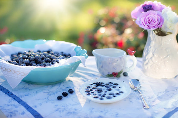 Five Ways to Use Your Blueberry Harvest