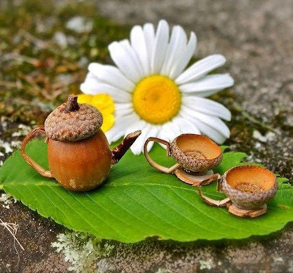 Awesome Autumn Fairy Garden Ideas